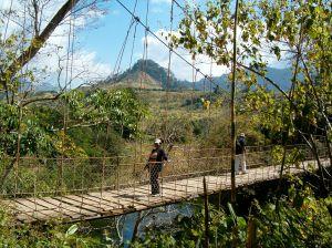Bridge 2005