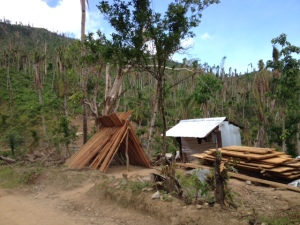 Rebuilding in the midst of devastation: the coco lumber is drying