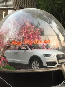 An Audi crowned with pink peach blossoms for the New Year?