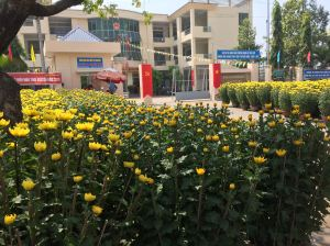 Yellow mums wait for buyers along a street in Bien Hoa.