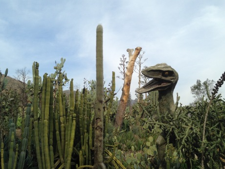 Dinosaur among the cacti