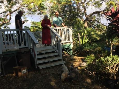 Maida feeds the chickens